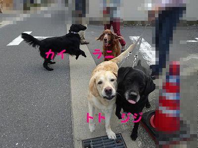 e0222588_18530234.jpg