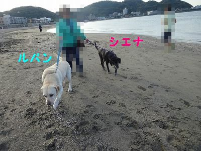 e0222588_18531072.jpg