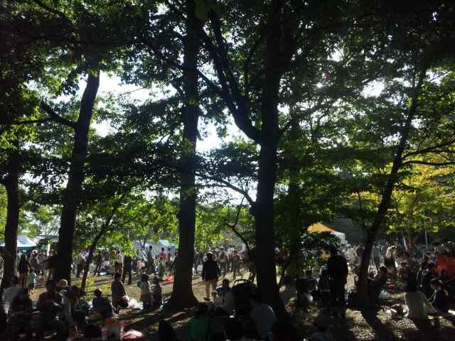 blog:森の秋祭り_a0103940_1673369.jpg