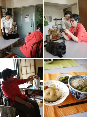 猫の森株式会社 東京都渋谷区千駄ヶ谷。_a0143140_21152365.png