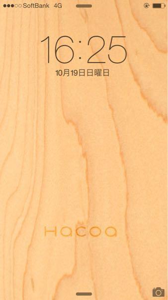 b0136045_16335878.jpg