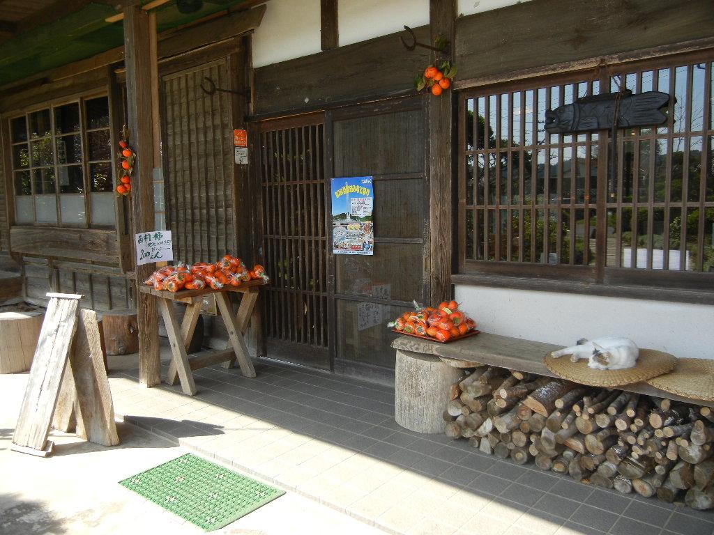 '14,10,19(日)新蕎麦食べに行ったYO!_f0060461_2002174.jpg