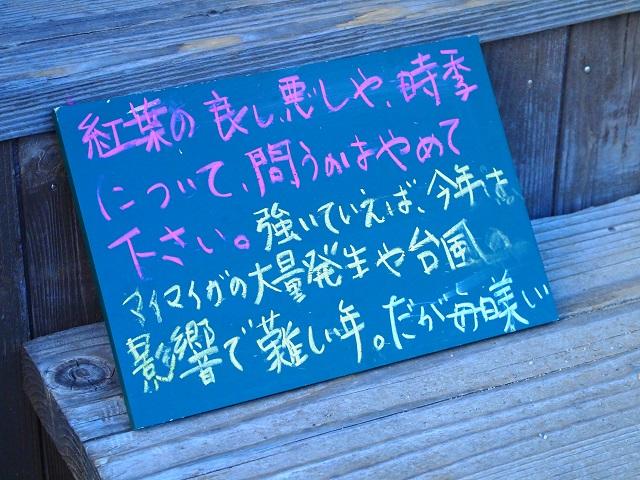 b0213806_211751.jpg