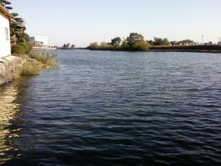TBC スキルアップミーティング&バス釣り大会 第7戦ご案内_a0153216_14294234.jpg