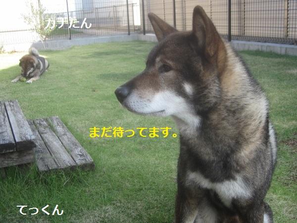 f0143123_9111214.jpg