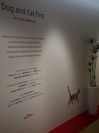 【ロイヤルカナン】第2回犬と猫の健康アンバサダーミーティング ①ロイヤルカナンジャポン本社編。_a0143140_2083692.jpg