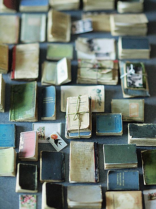 miniature* 洋書 と、休日_e0172847_1514188.jpg