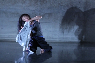 「ダンスブリッジ・インターナショナル」始まる_d0178431_10120045.jpg