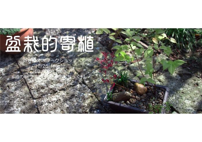 「小さいお庭の作庭」ワークショップ_d0122640_9494715.jpg