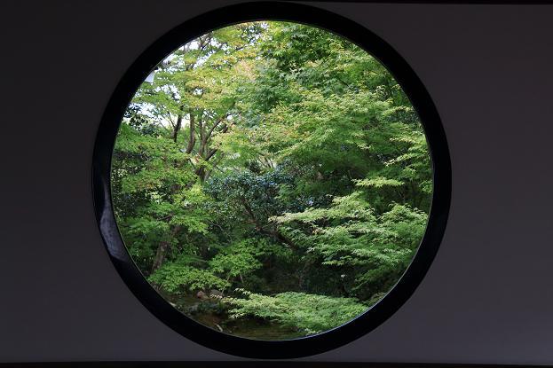 そうだ京都へ行こう2014盛秋 ♪ _e0295348_13335913.jpg