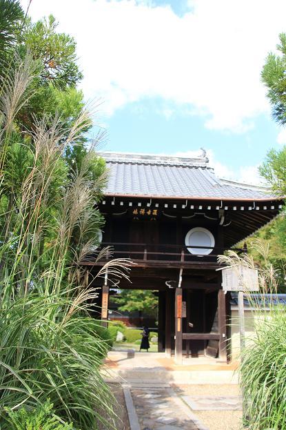 そうだ京都へ行こう2014盛秋 ♪ _e0295348_1333848.jpg