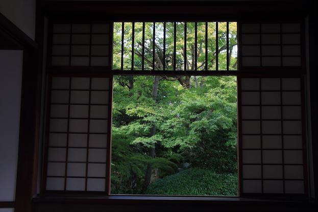 そうだ京都へ行こう2014盛秋 ♪ _e0295348_13345748.jpg