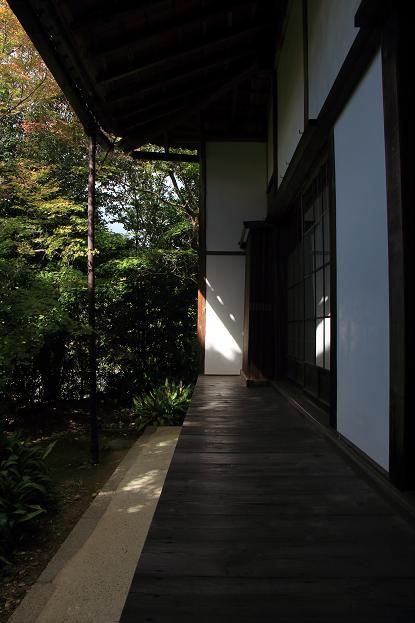 そうだ京都へ行こう2014盛秋 ♪ _e0295348_13361425.jpg