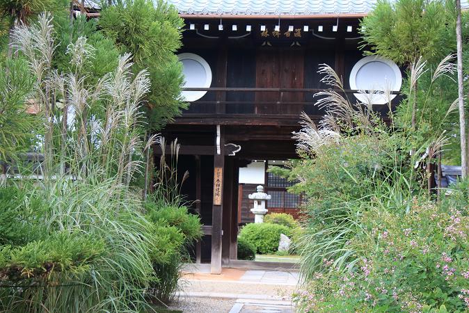 そうだ京都へ行こう2014盛秋 ♪ _e0295348_13464054.jpg