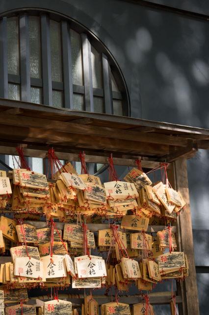 湯島聖堂_a0257652_2136982.jpg