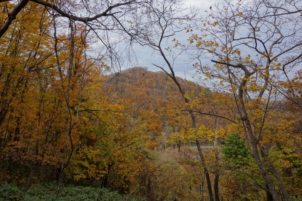 小林峠から砥石山、10月20日_f0138096_2024884.jpg