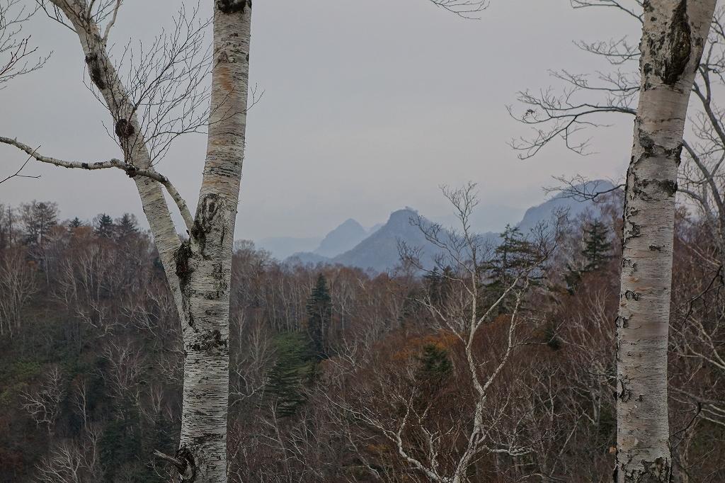 小林峠から砥石山、10月20日_f0138096_2035969.jpg