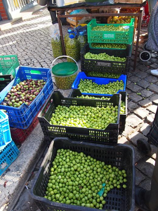 南ポルトガルの秋の訪れは・・・オリーブ_f0152733_228755.jpg