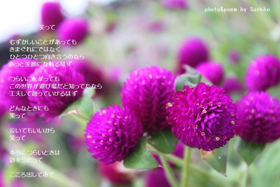f0351844_09095937.jpg