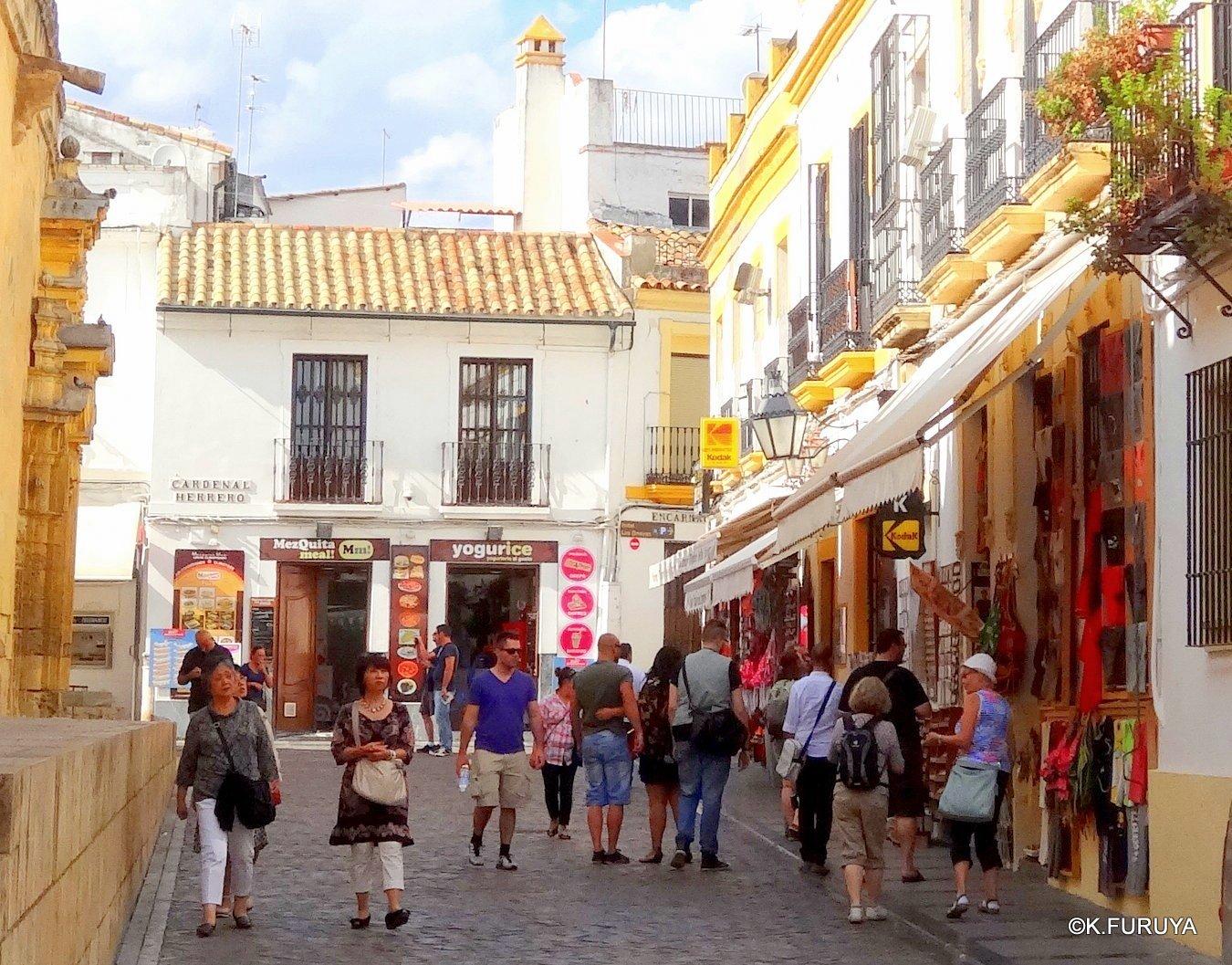 スペイン旅行記 11 コルドバ_a0092659_2313552.jpg