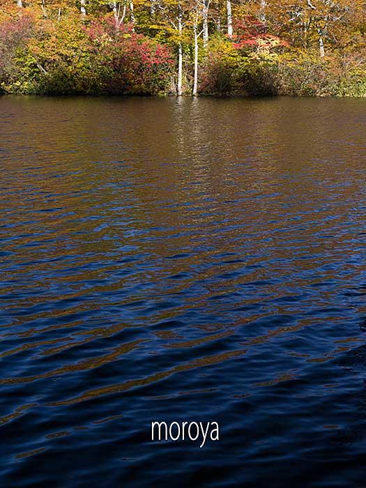 秋の水面_c0085877_07033627.jpg