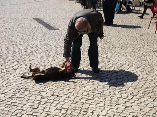 """南ポルトガルの漁師町で \""""仲良し\"""" を見つける_f0152733_2362023.jpg"""