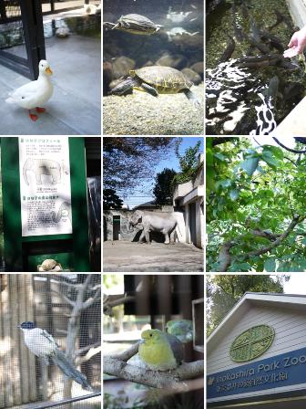井の頭自然文化園 東京都武蔵野市。_a0143140_21165724.png
