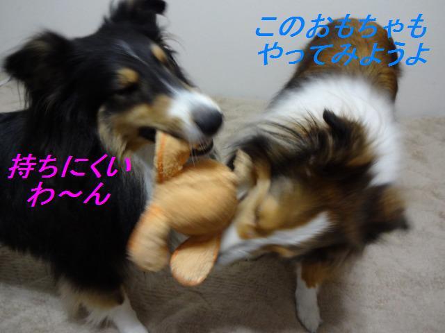 e0195743_20105061.jpg
