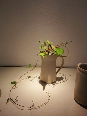 東慶寺「二人の花」展へ_b0132444_13152516.jpg