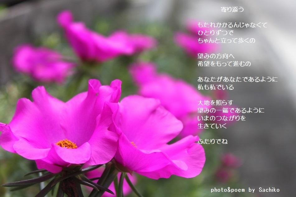 f0351844_08131632.jpg