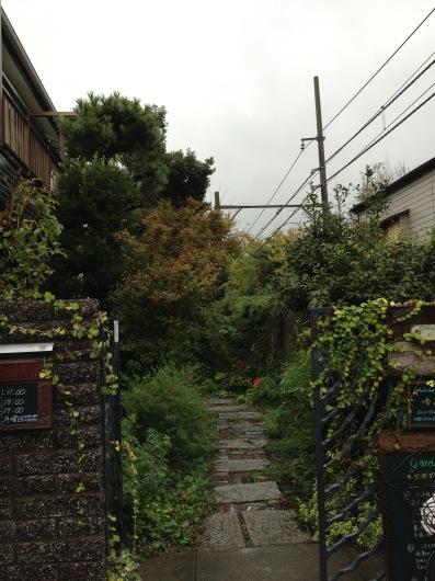 秋の雨の日_a0267845_21522309.jpg