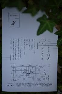 「フボーの植物展 白3」開催中!_f0226293_9284343.jpg