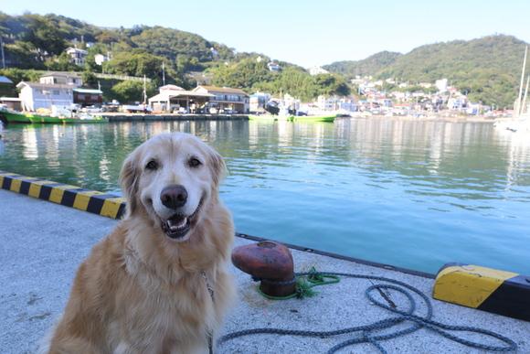 漁村のレポーター_b0275998_11121875.jpg