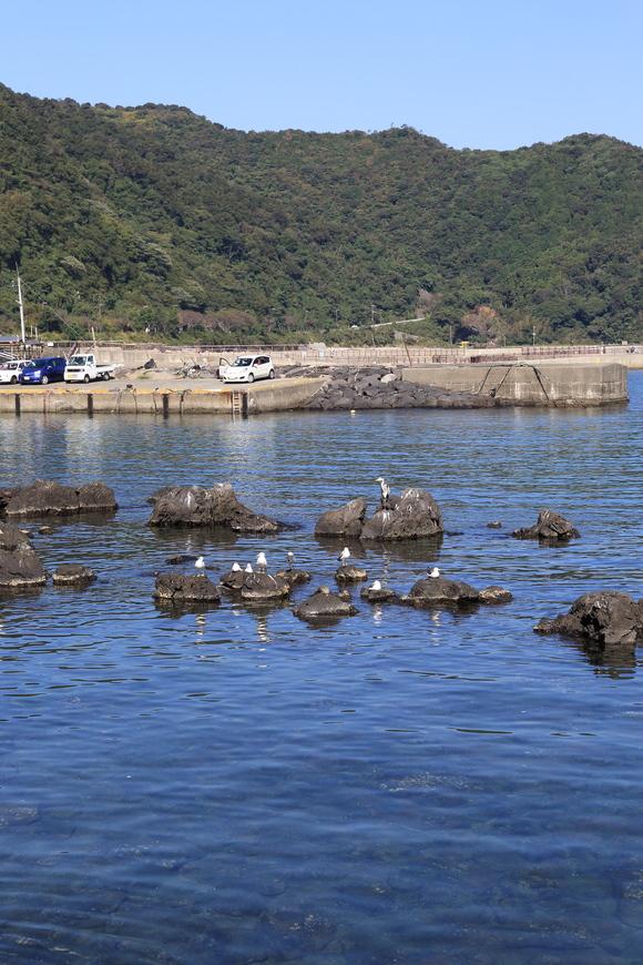 漁村のレポーター_b0275998_11171217.jpg