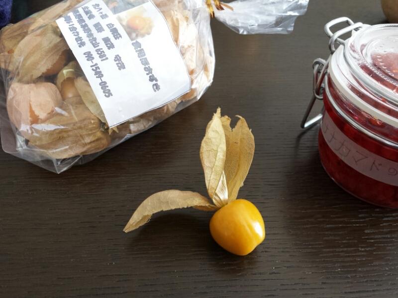 食用ほおずき_e0155231_12262433.jpg