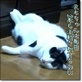 maamaお姫様失神_b0151748_13142481.jpg
