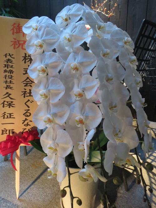ミシュランガイド関西2015・・・_a0160153_2223946.jpg