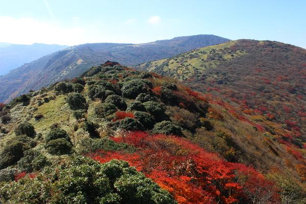 泉水山・黒岩山紅葉登山_e0262382_15465269.jpg