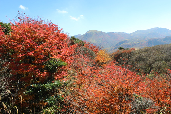泉水山・黒岩山紅葉登山_e0262382_15555727.jpg