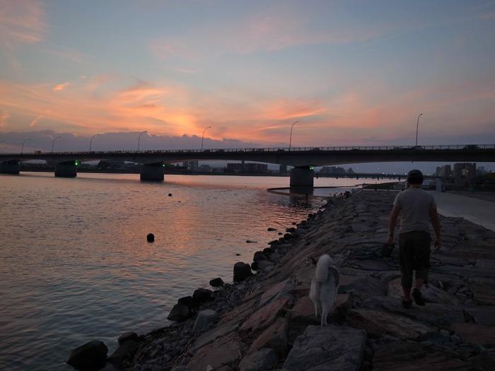 のどかなおんぶ犬の一日 (≧∇≦)_c0049299_22121418.jpg