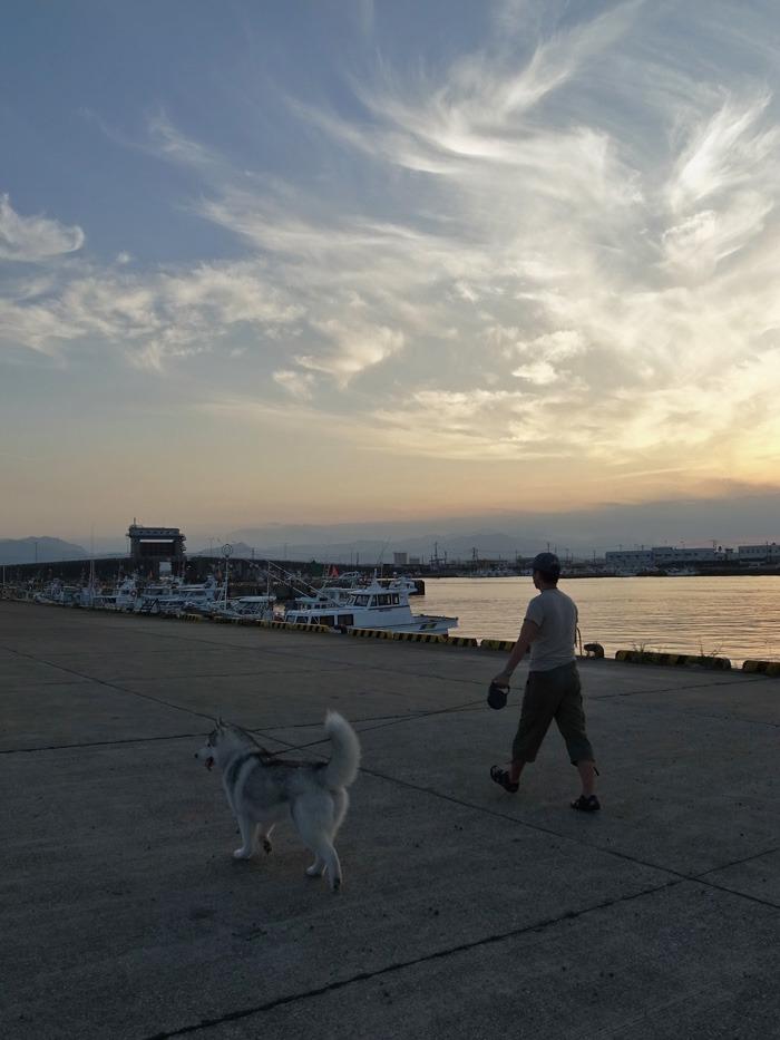 のどかなおんぶ犬の一日 (≧∇≦)_c0049299_22125159.jpg