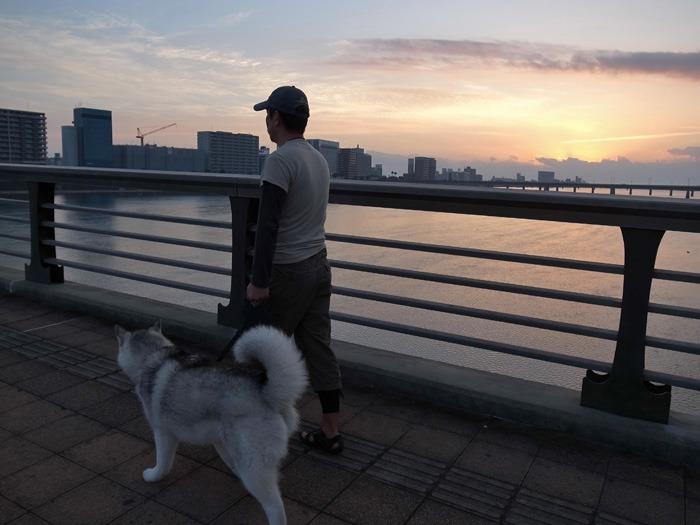 のどかなおんぶ犬の一日 (≧∇≦)_c0049299_2216783.jpg