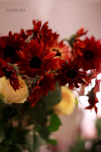 金色に輝く秋の花たち_b0208604_12452862.jpg