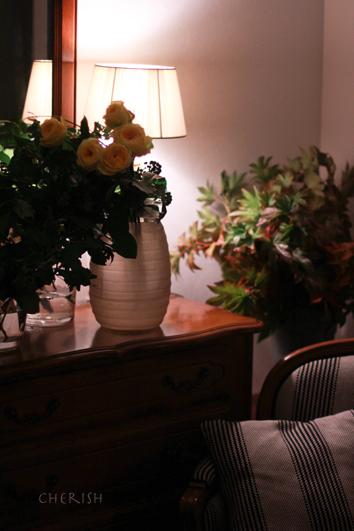 金色に輝く秋の花たち_b0208604_12461082.jpg