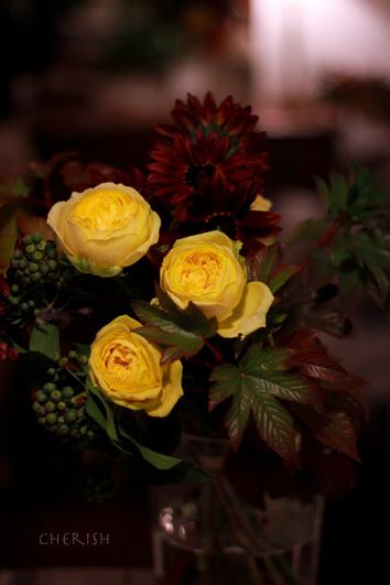 金色に輝く秋の花たち_b0208604_12473255.jpg