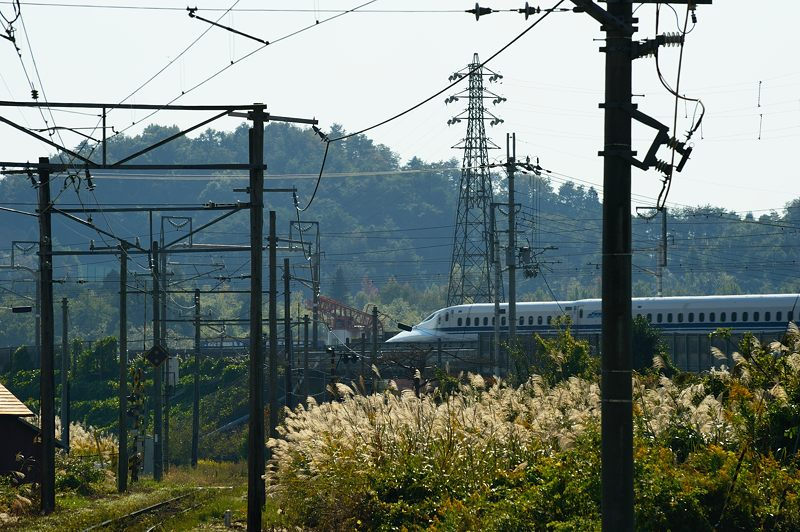 近江鉄道沿線巡り 其の四(中山道 鳥居本)_f0032011_18233622.jpg