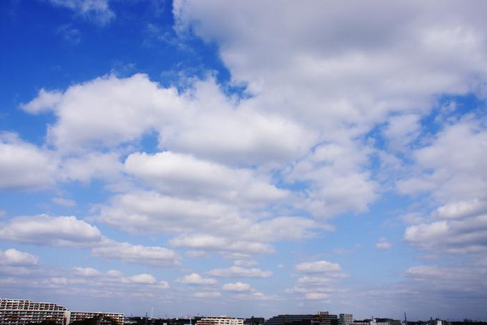 扁平雲 (積雲)_b0268615_8122742.jpg