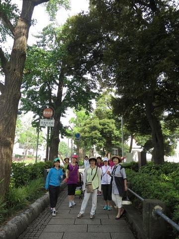 「歩コム」という、もう1つの歩き方。_d0046025_2311381.jpg