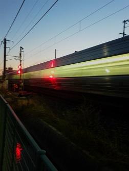 夕方の特急通過_c0034228_21184594.jpg