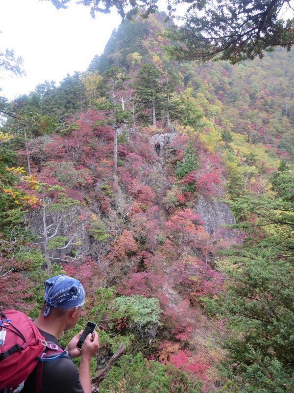 秋のお山は…_b0133032_1838372.jpg